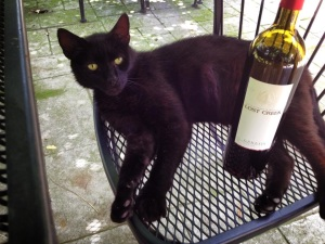 The sweet Merlot who stayed with us at Lost Creek near Leesburg