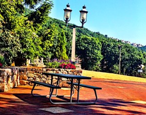 My morning tea scene at Wintergreen